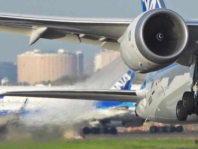 チャレンジャーさんが、羽田空港で撮影した全日空 787-9の航空フォト(飛行機 写真・画像)