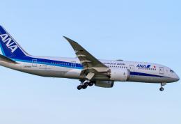 Mame @ TYOさんが、成田国際空港で撮影した全日空 787-8 Dreamlinerの航空フォト(飛行機 写真・画像)