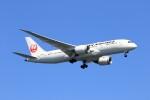 walker2000さんが、羽田空港で撮影した日本航空 787-8 Dreamlinerの航空フォト(飛行機 写真・画像)