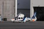KAZFLYERさんが、東京ヘリポートで撮影したオールニッポンヘリコプター AS365N3 Dauphin 2の航空フォト(飛行機 写真・画像)