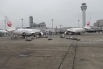 ガスパールさんが、羽田空港で撮影した日本航空 A350-941の航空フォト(飛行機 写真・画像)