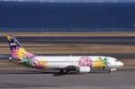 kumagorouさんが、羽田空港で撮影したスカイネットアジア航空 737-4M0の航空フォト(飛行機 写真・画像)