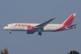 じゃがさんが、成田国際空港で撮影したアビアンカ航空 787-8 Dreamlinerの航空フォト(飛行機 写真・画像)