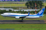 Chofu Spotter Ariaさんが、仙台空港で撮影した全日空 737-881の航空フォト(飛行機 写真・画像)
