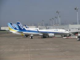 ヒロリンさんが、羽田空港で撮影した全日空 A320-271Nの航空フォト(飛行機 写真・画像)