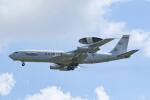 Mochi7D2さんが、横田基地で撮影したアメリカ空軍 E-3B Sentry (707-300)の航空フォト(飛行機 写真・画像)
