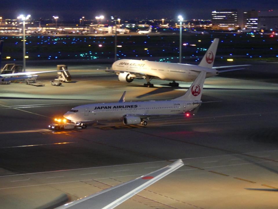 蒲田っ子さんの日本航空 Boeing 737-800 (JA339J) 航空フォト
