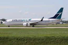 JETBIRDさんが、モントリオール・ピエール・エリオット・トルドー国際空港で撮影したウェストジェット 737-8CTの航空フォト(飛行機 写真・画像)