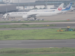 ねこねこちゃんさんが、羽田空港で撮影した日本航空 777-346/ERの航空フォト(飛行機 写真・画像)