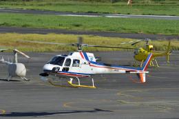 Gambardierさんが、岡南飛行場で撮影した四国航空 AS350B3 Ecureuilの航空フォト(飛行機 写真・画像)