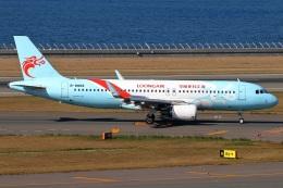 たみぃさんが、中部国際空港で撮影した長竜航空 A320-214の航空フォト(飛行機 写真・画像)
