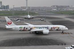 muneyan007さんが、羽田空港で撮影した日本航空 787-9の航空フォト(飛行機 写真・画像)