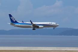 久場悠誠さんが、那覇空港で撮影した全日空 737-881の航空フォト(飛行機 写真・画像)