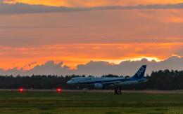 ひげじいさんが、庄内空港で撮影した全日空 A320-271Nの航空フォト(飛行機 写真・画像)