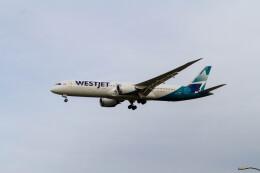 jombohさんが、ロンドン・ガトウィック空港で撮影したウェストジェット 787-9の航空フォト(飛行機 写真・画像)