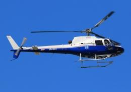 LOTUSさんが、八尾空港で撮影した東邦航空 AS350B Ecureuilの航空フォト(飛行機 写真・画像)