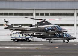 voyagerさんが、東京ヘリポートで撮影した警視庁 A109S Trekkerの航空フォト(飛行機 写真・画像)