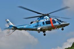 ブルーさんさんが、静岡ヘリポートで撮影した沖縄県警察 A109E Powerの航空フォト(飛行機 写真・画像)