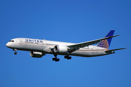 ちゃぽんさんが、成田国際空港で撮影したユナイテッド航空 787-9の航空フォト(飛行機 写真・画像)