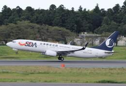 ハム太郎。さんが、成田国際空港で撮影した山東航空 737-85Nの航空フォト(飛行機 写真・画像)