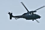 Dojalanaさんが、函館空港で撮影した航空自衛隊 UH-60Jの航空フォト(飛行機 写真・画像)