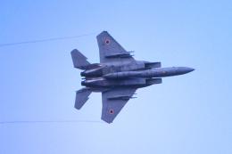 AWACSさんが、入間飛行場で撮影した航空自衛隊 F-15DJ Eagleの航空フォト(飛行機 写真・画像)