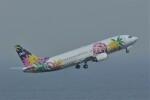 kumagorouさんが、羽田空港で撮影したスカイネットアジア航空 737-4Y0の航空フォト(飛行機 写真・画像)