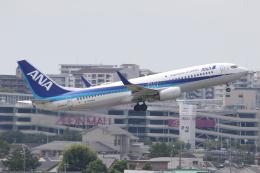 ANA744Foreverさんが、伊丹空港で撮影した全日空 737-881の航空フォト(飛行機 写真・画像)