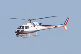 青春の1ページさんが、高松空港で撮影した四国航空 AS350B3 Ecureuilの航空フォト(飛行機 写真・画像)