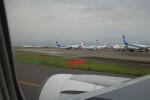 ガスパールさんが、羽田空港で撮影した日本トランスオーシャン航空 737-8Q3の航空フォト(飛行機 写真・画像)
