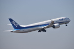 turenoアカクロさんが、成田国際空港で撮影した全日空 787-9の航空フォト(飛行機 写真・画像)