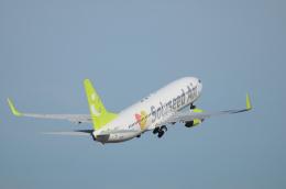 EC5Wさんが、中部国際空港で撮影したソラシド エア 737-81Dの航空フォト(飛行機 写真・画像)