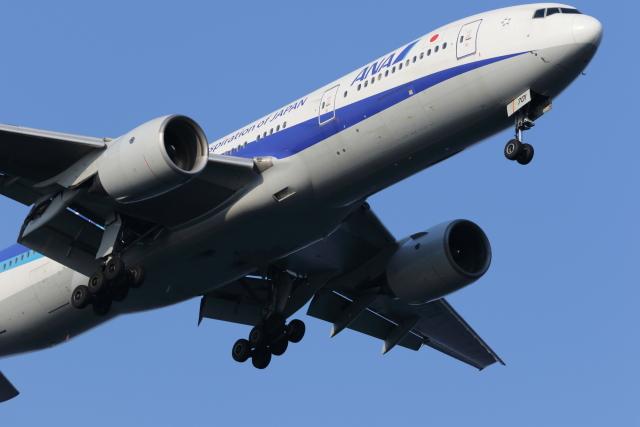 kando-yamaさんが、羽田空港で撮影した全日空 777-281の航空フォト(飛行機 写真・画像)