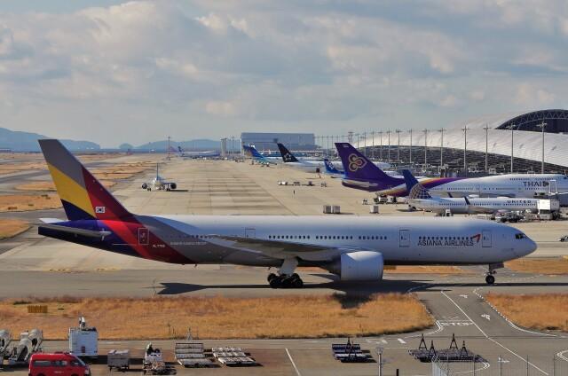 mild lifeさんが、関西国際空港で撮影したアシアナ航空 777-28E/ERの航空フォト(飛行機 写真・画像)