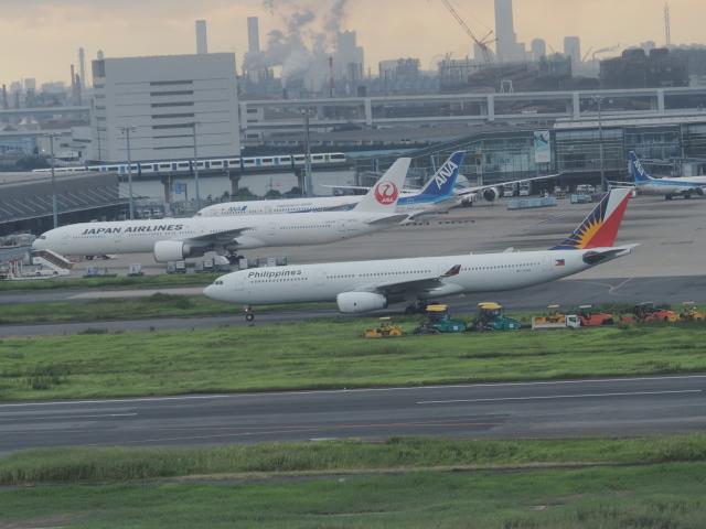 ねこねこちゃんさんが、羽田空港で撮影したフィリピン航空 A330-343Xの航空フォト(飛行機 写真・画像)