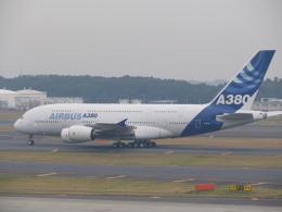 kahluamilkさんが、成田国際空港で撮影したエアバス A380-841の航空フォト(飛行機 写真・画像)