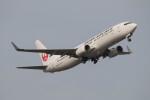 Koenig117さんが、羽田空港で撮影した日本航空 737-846の航空フォト(飛行機 写真・画像)