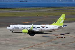わんだーさんが、中部国際空港で撮影したソラシド エア 737-81Dの航空フォト(飛行機 写真・画像)