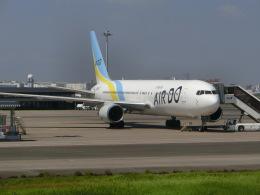 ヒロリンさんが、羽田空港で撮影したAIR DO 767-33A/ERの航空フォト(飛行機 写真・画像)