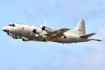 JRF spotterさんが、ダニエル・K・イノウエ国際空港で撮影した海上自衛隊 P-3Cの航空フォト(飛行機 写真・画像)