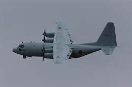 ohohoさんが、厚木飛行場で撮影した海上自衛隊 C-130Rの航空フォト(飛行機 写真・画像)