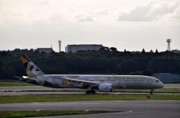 よんすけさんが、成田国際空港で撮影したエティハド航空 787-9の航空フォト(飛行機 写真・画像)