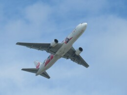 Tradel View FUKUROさんが、那覇空港で撮影した日本航空 767-346/ERの航空フォト(飛行機 写真・画像)
