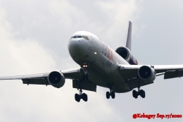 湖景さんが、成田国際空港で撮影したフェデックス・エクスプレス MD-11Fの航空フォト(飛行機 写真・画像)