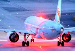 M.Tさんが、関西国際空港で撮影した長竜航空 A320-251Nの航空フォト(飛行機 写真・画像)