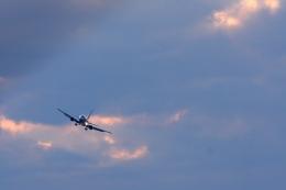 Hiro-hiroさんが、新潟空港で撮影したANAウイングス 737-5L9の航空フォト(飛行機 写真・画像)