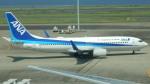 るかりおさんが、羽田空港で撮影した全日空 737-881の航空フォト(飛行機 写真・画像)