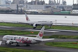 juntamiさんが、羽田空港で撮影した日本航空 767-346/ERの航空フォト(飛行機 写真・画像)