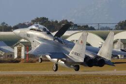 mocohide☆さんが、新田原基地で撮影した航空自衛隊 F-15DJ Eagleの航空フォト(飛行機 写真・画像)