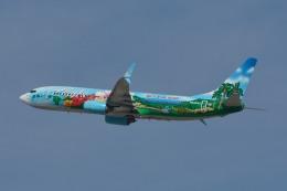 小弦さんが、ノーマン・Y・ミネタ・サンノゼ国際空港で撮影したアラスカ航空 737-890の航空フォト(飛行機 写真・画像)